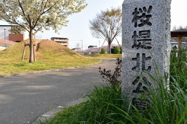 桜堤北公園