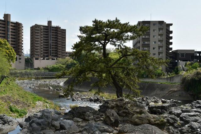 JR駅に一番近い滝、鮎壷の滝