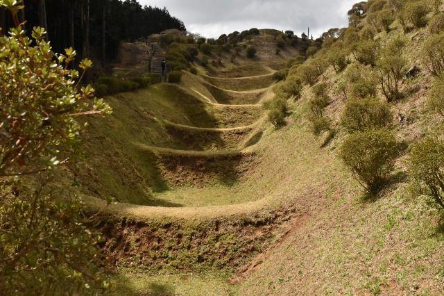 山中城跡の西ノ丸畝掘