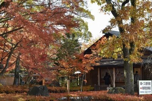 三島市立公園の楽寿園