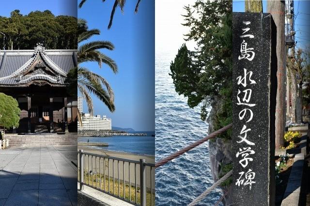 f:id:akiakigogogo:20180521215323j:plain