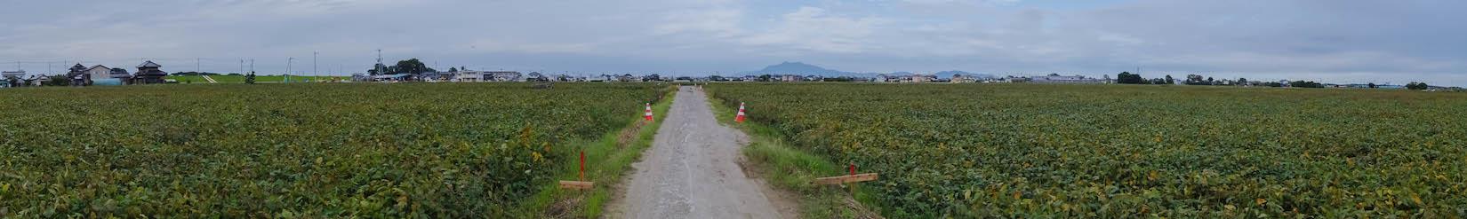 f:id:akichiniiko:20170421154047j:plain