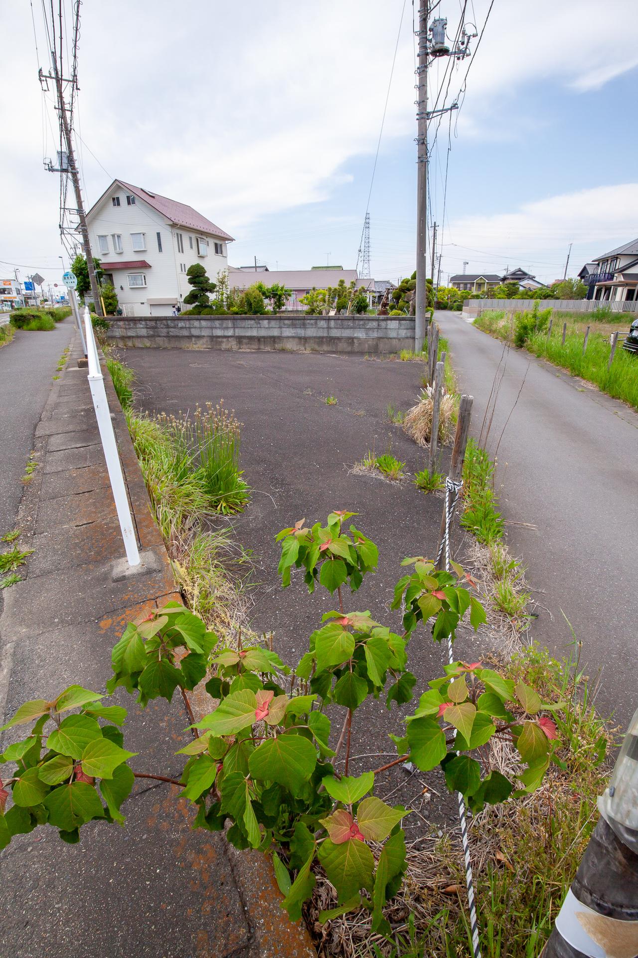 f:id:akichiniiko:20190515175035j:plain