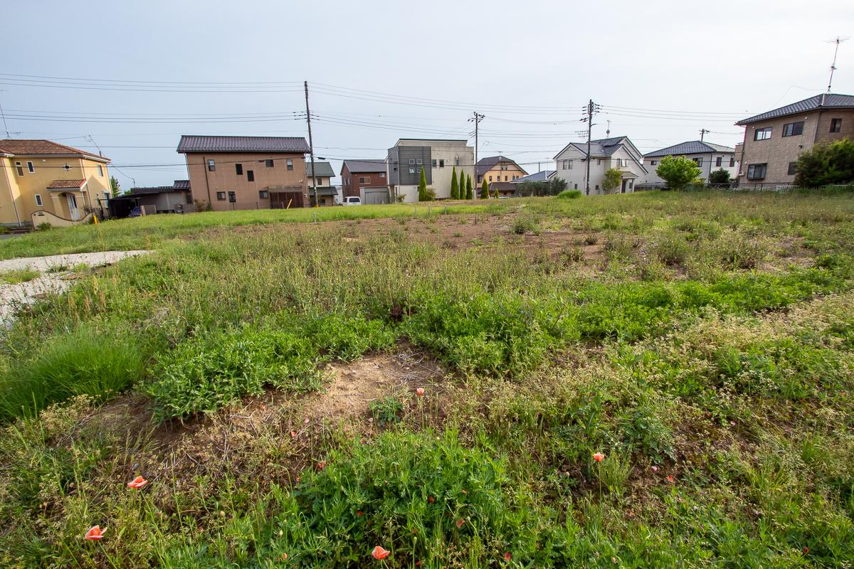 f:id:akichiniiko:20191025185232j:plain