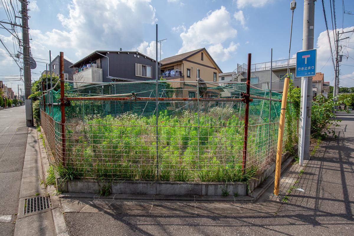 f:id:akichiniiko:20191025201535j:plain