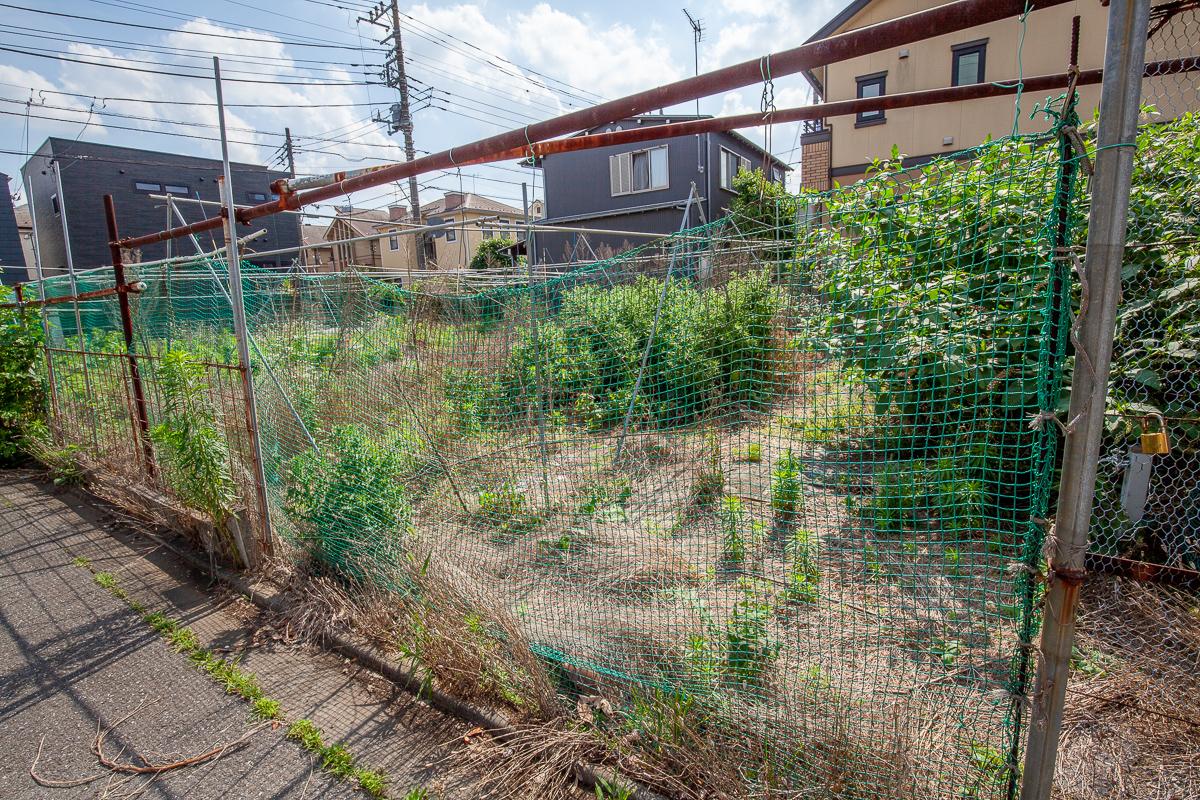 f:id:akichiniiko:20191101133634j:plain