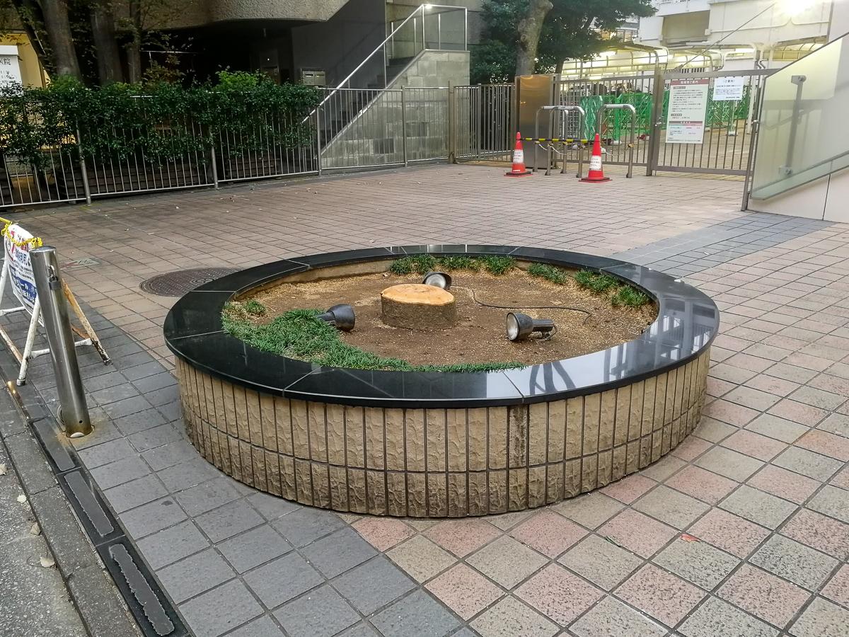 f:id:akichiniiko:20191112152843j:plain