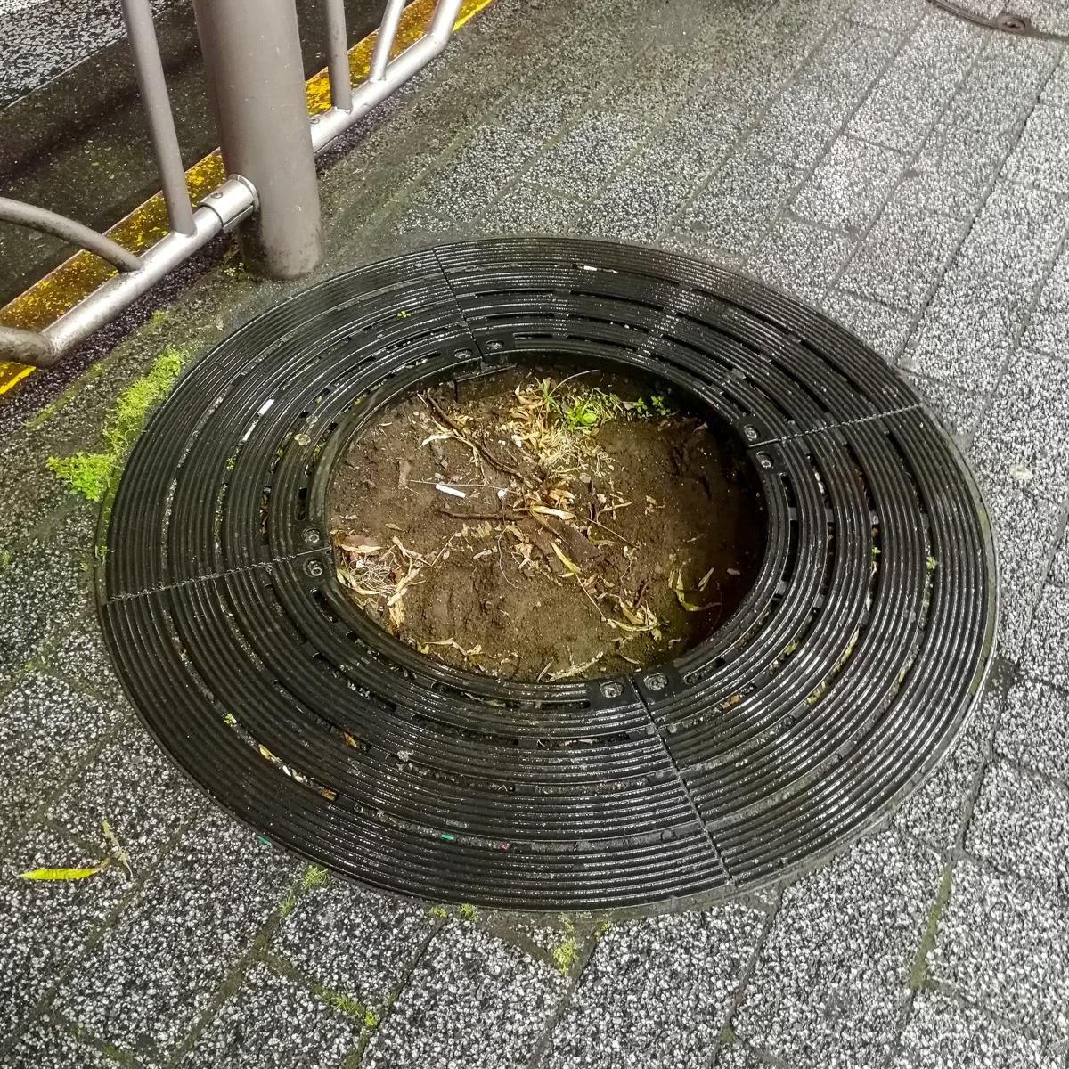 f:id:akichiniiko:20191130210407j:plain