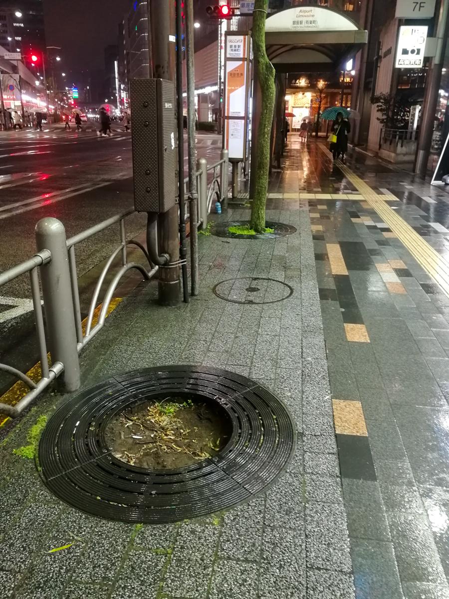 f:id:akichiniiko:20191130210411j:plain