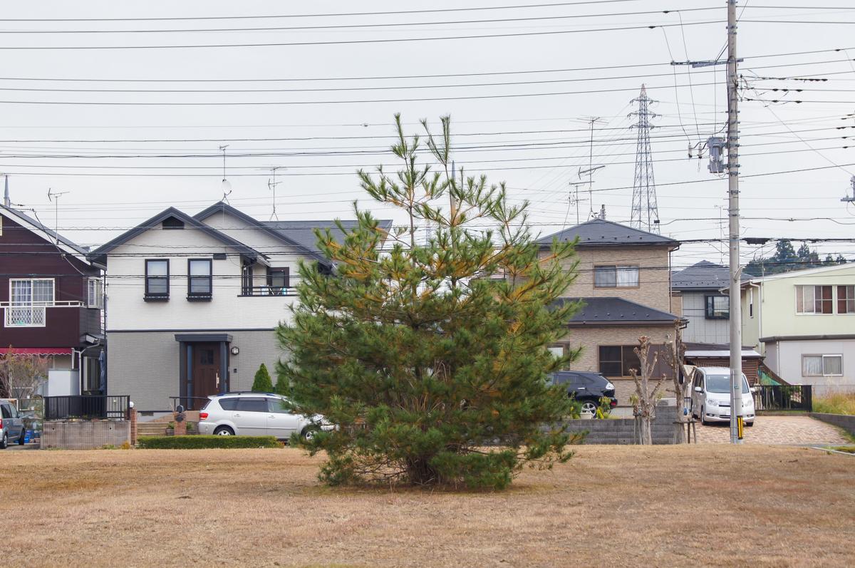 f:id:akichiniiko:20200102204651j:plain