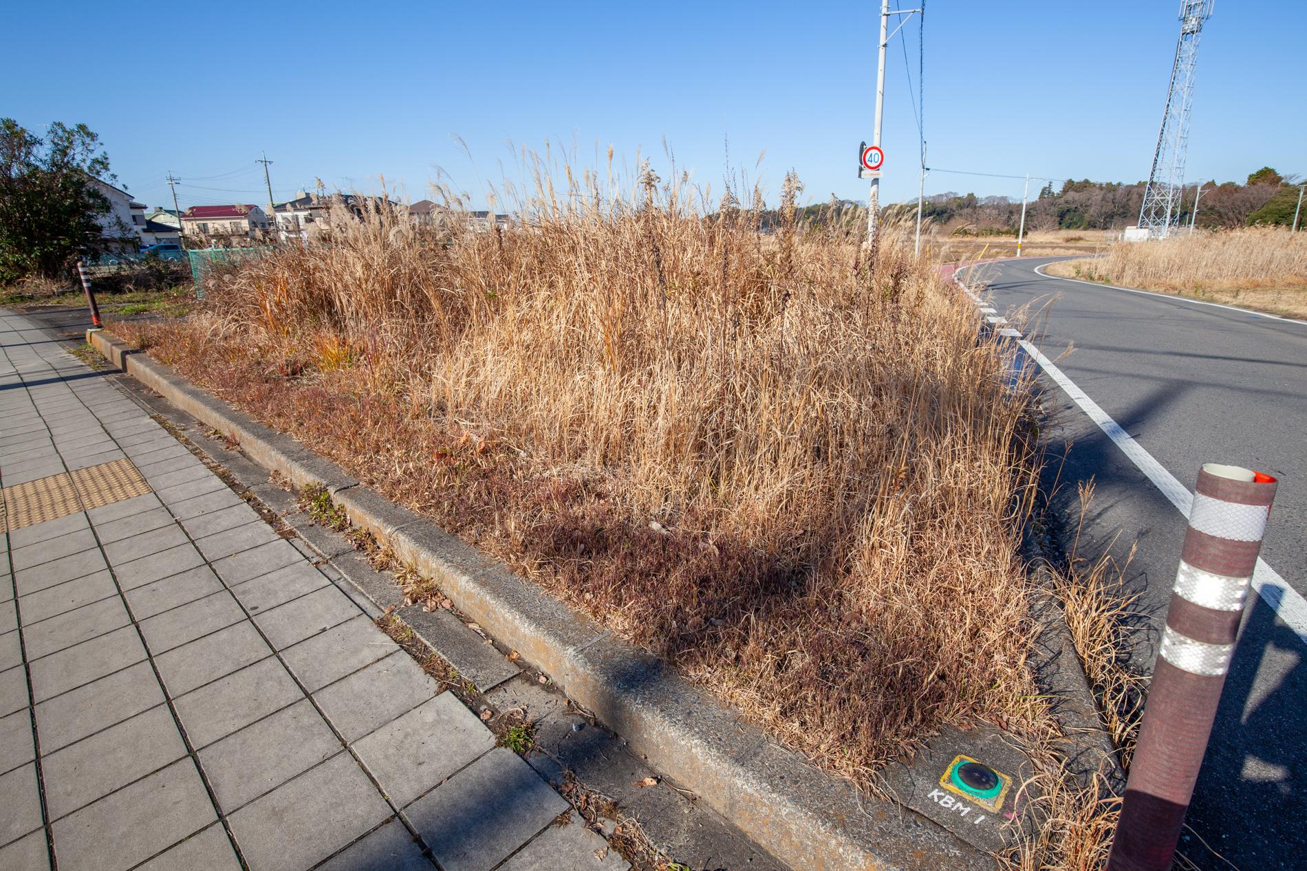 f:id:akichiniiko:20200124224620j:plain