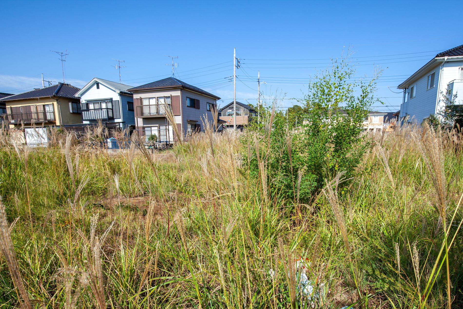 f:id:akichiniiko:20200125171350j:plain