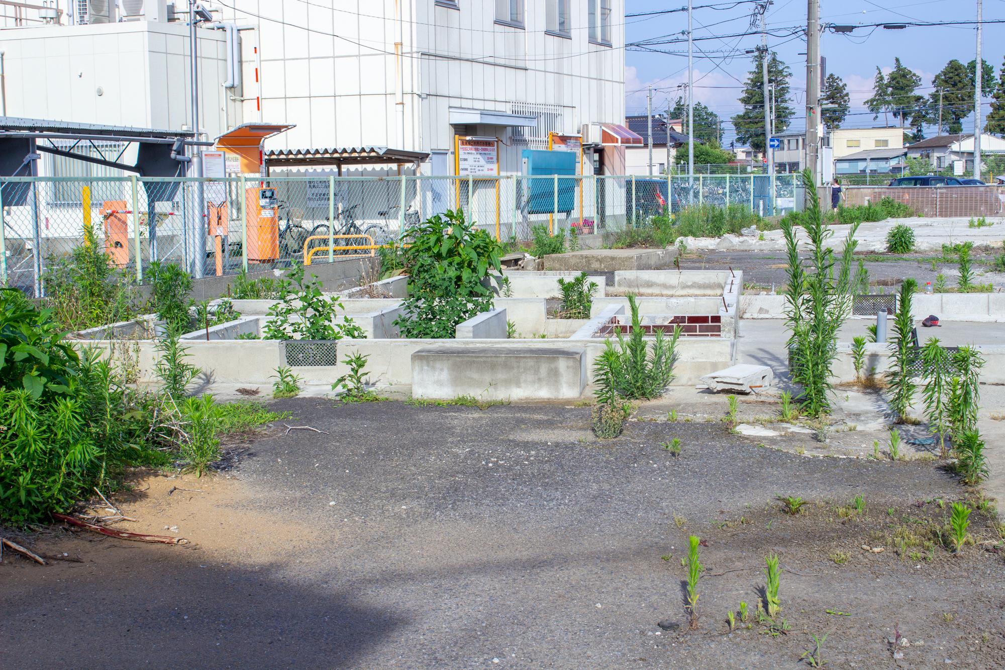 f:id:akichiniiko:20200528231601j:plain