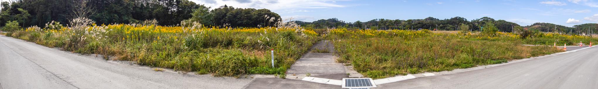 f:id:akichiniiko:20200607171729j:plain