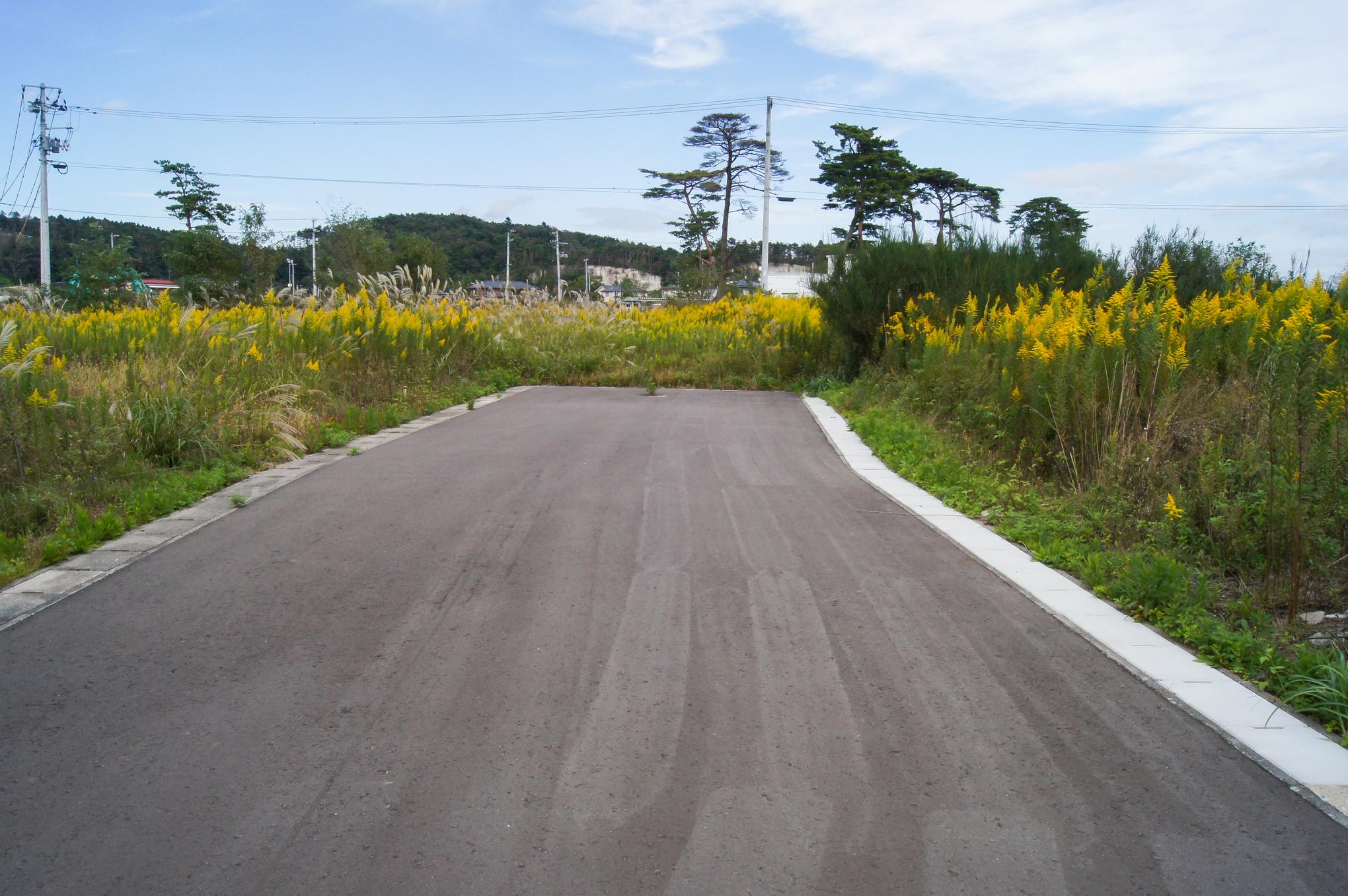 f:id:akichiniiko:20200607200451j:plain