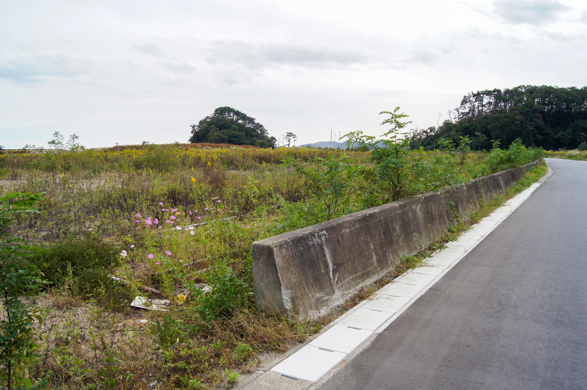 f:id:akichiniiko:20200607202049j:plain