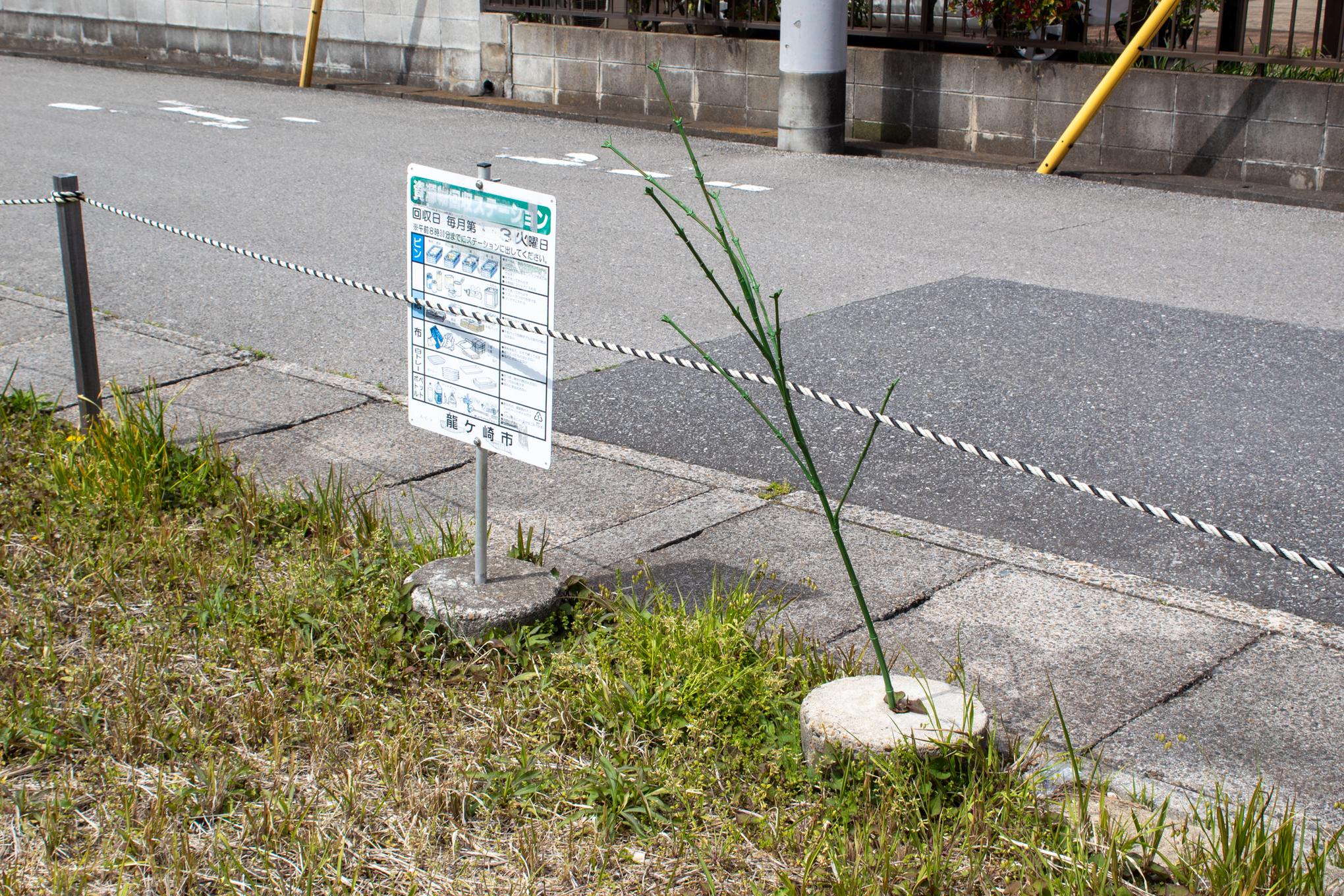 f:id:akichiniiko:20200711143719j:plain
