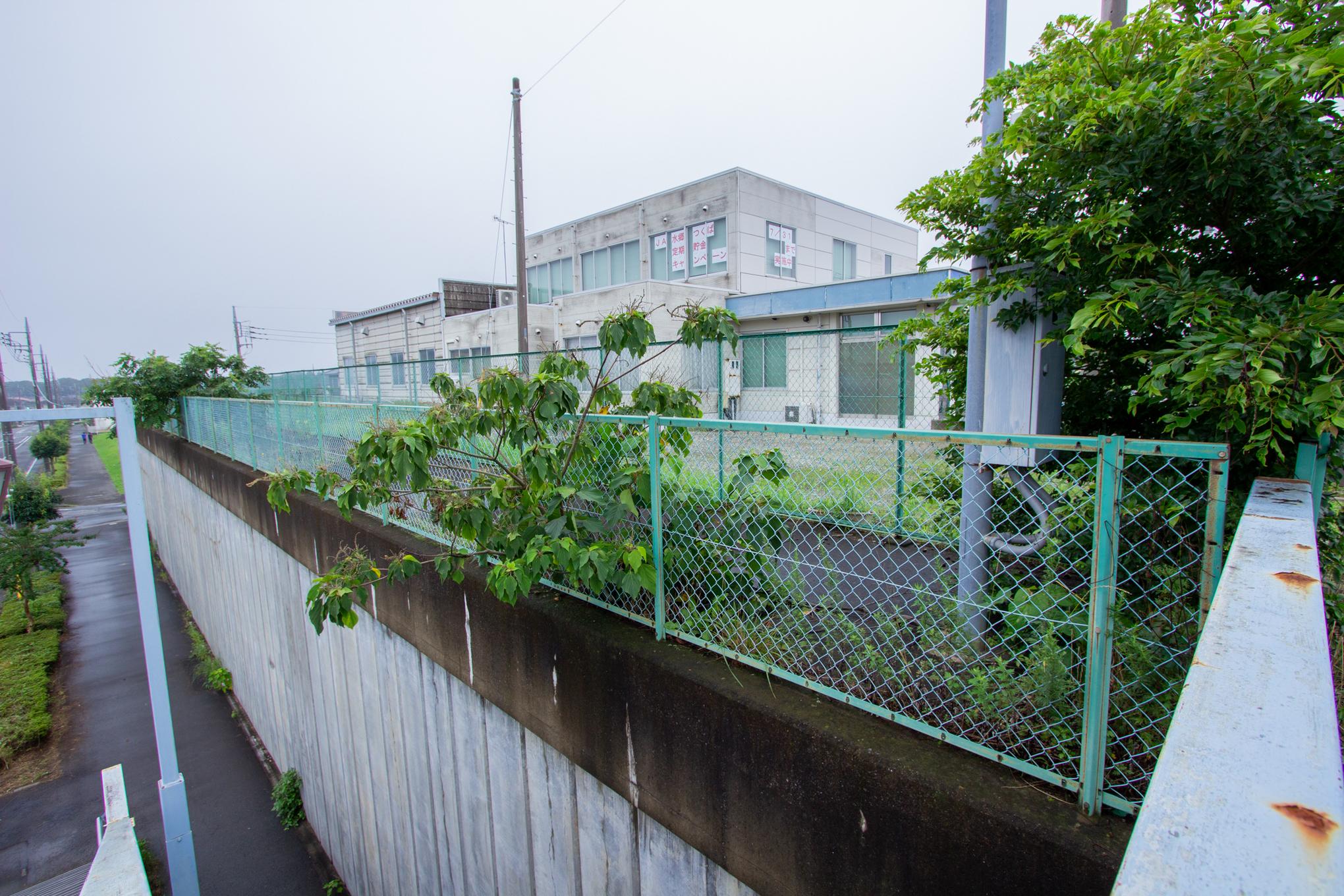 f:id:akichiniiko:20200718212117j:plain