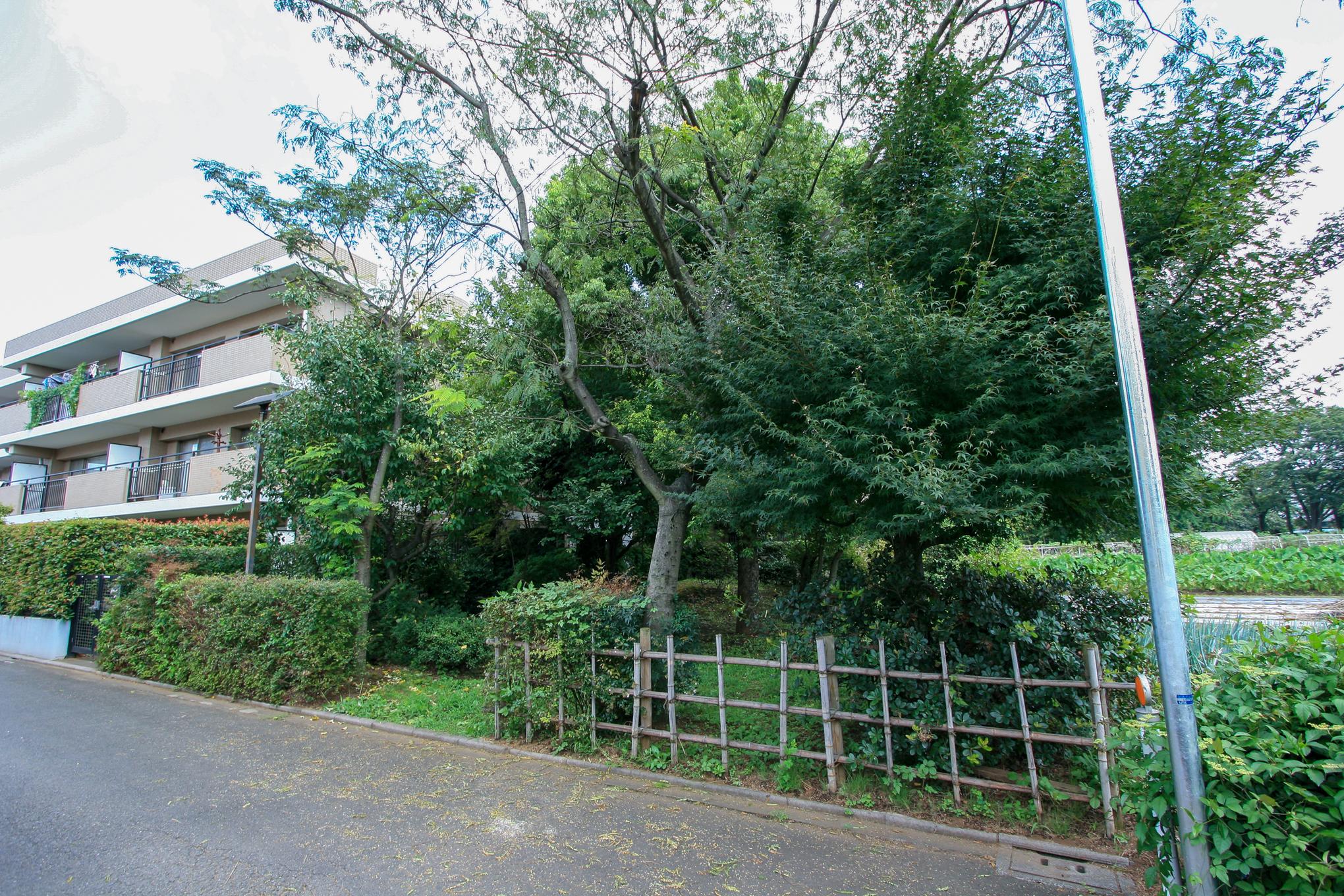 f:id:akichiniiko:20200722212020j:plain