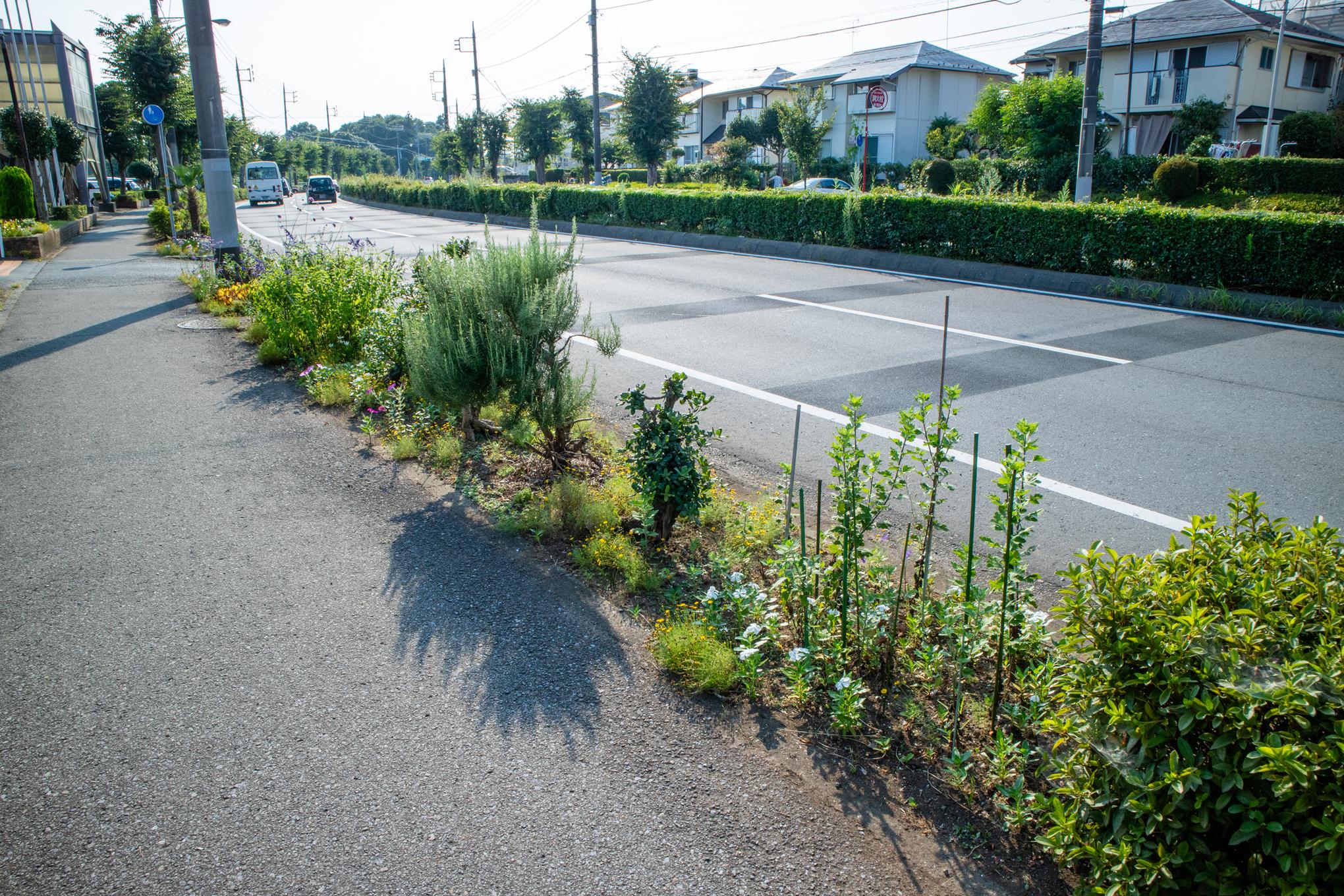 f:id:akichiniiko:20200808183906j:plain
