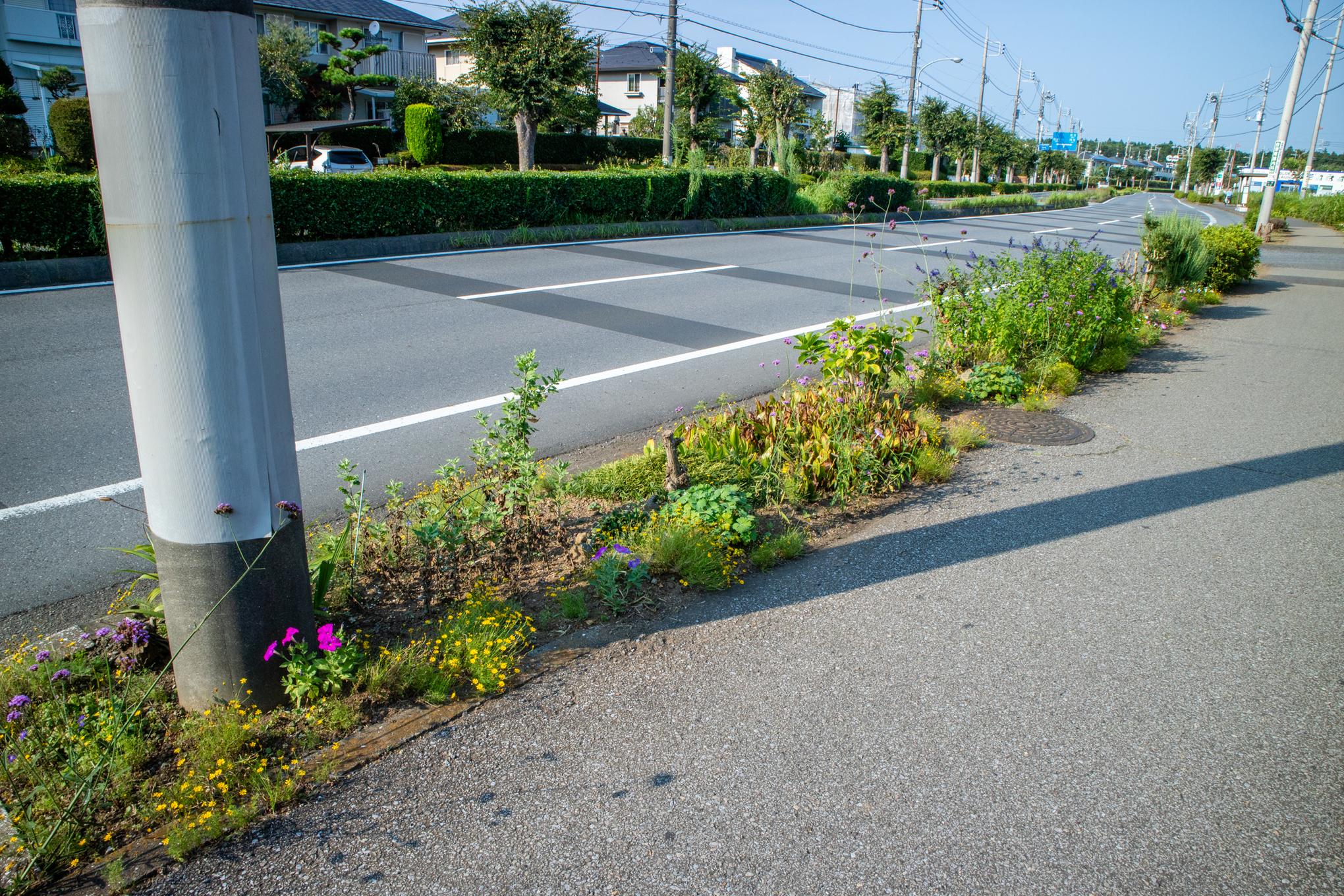 f:id:akichiniiko:20200808184319j:plain
