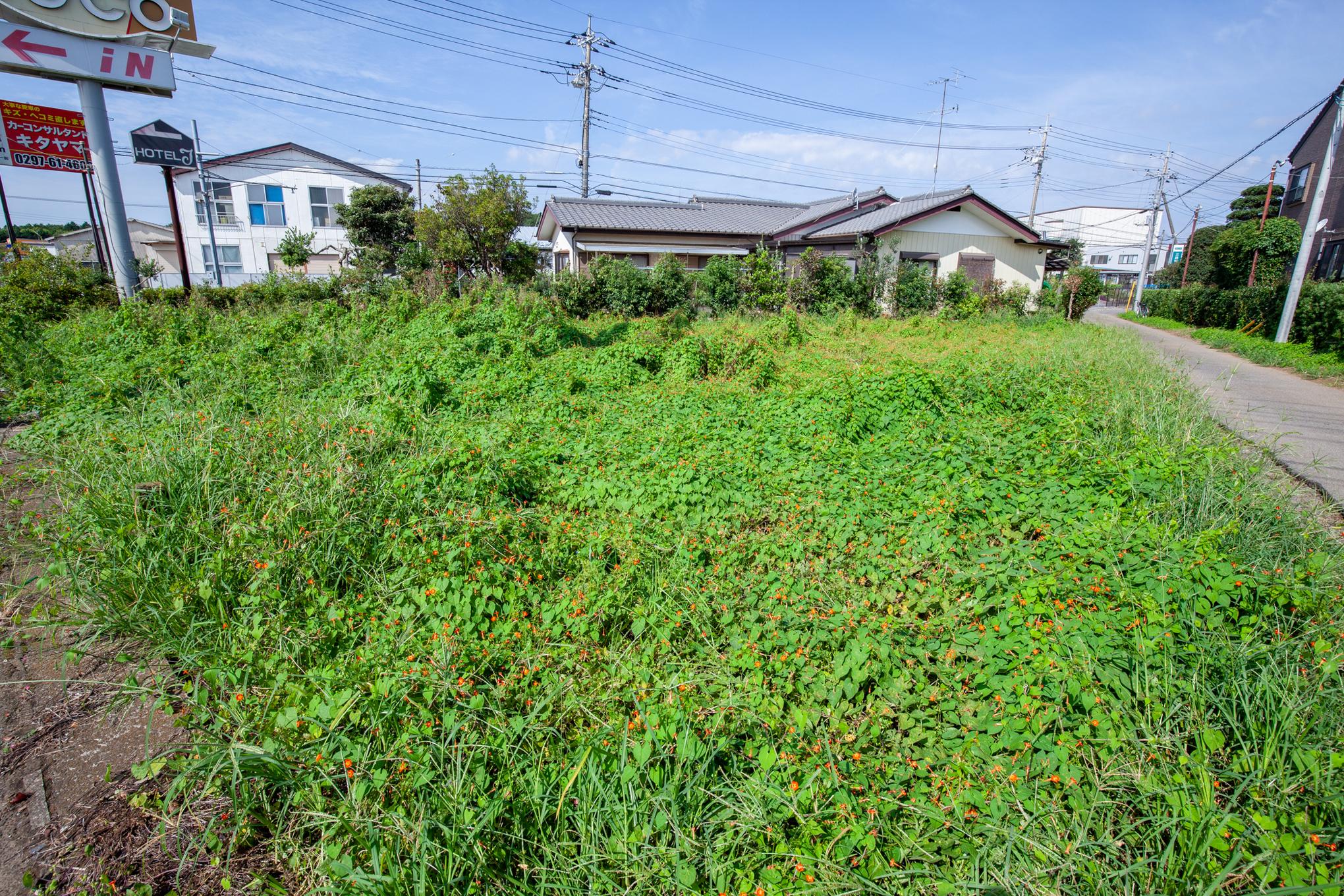 f:id:akichiniiko:20200923201644j:plain