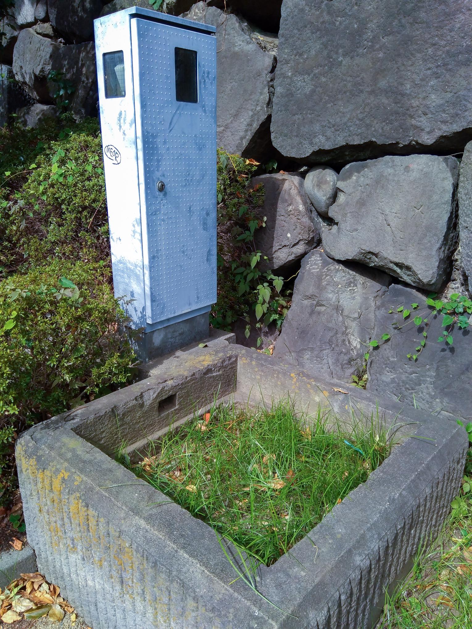 f:id:akichiniiko:20201207214830j:plain