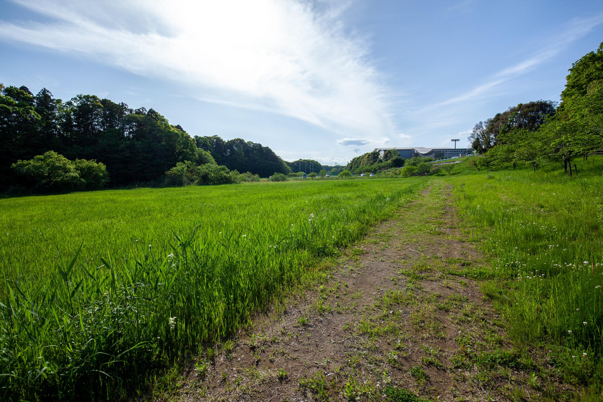 f:id:akichiniiko:20201231210056j:plain