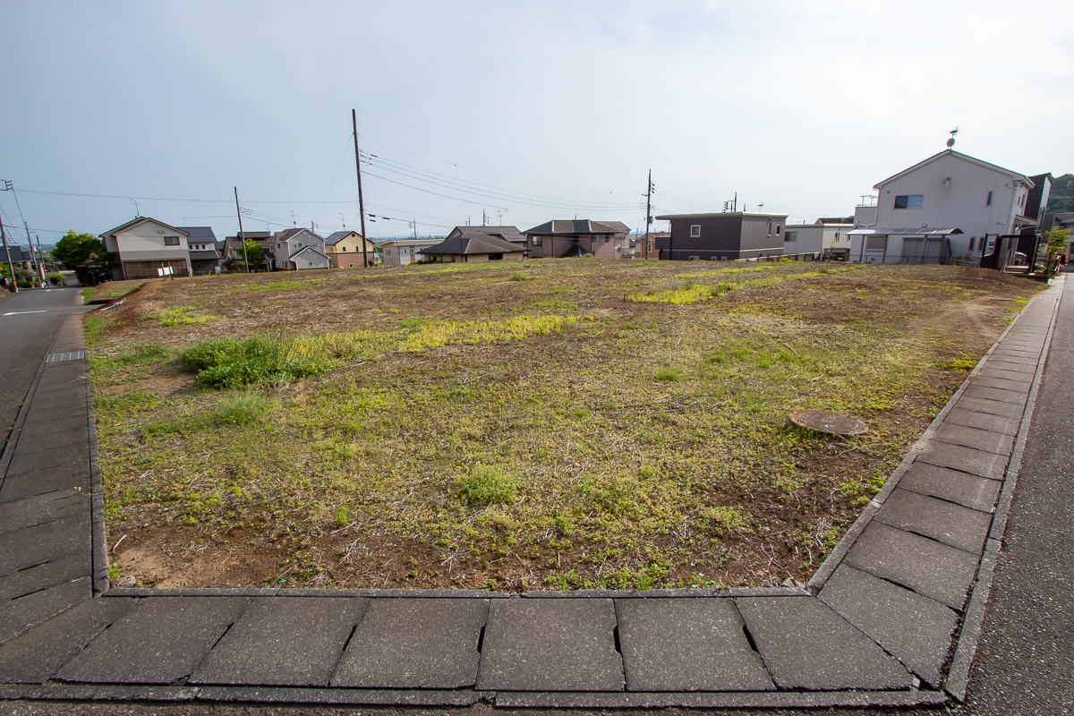 f:id:akichiniiko:20210220210603j:plain