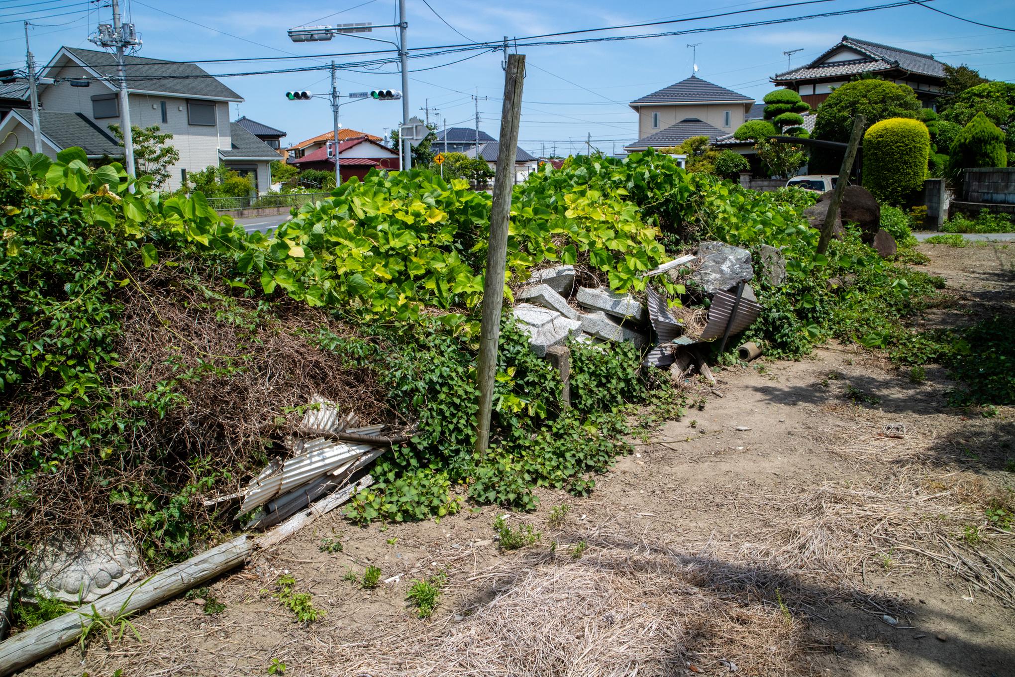 f:id:akichiniiko:20210611191158j:plain