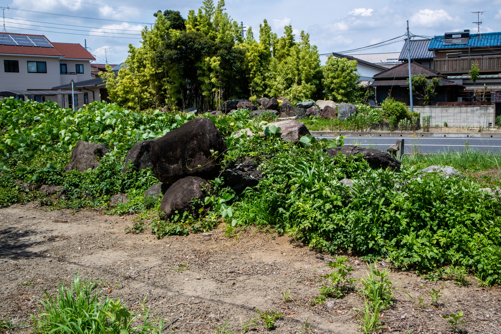 f:id:akichiniiko:20210611194338j:plain
