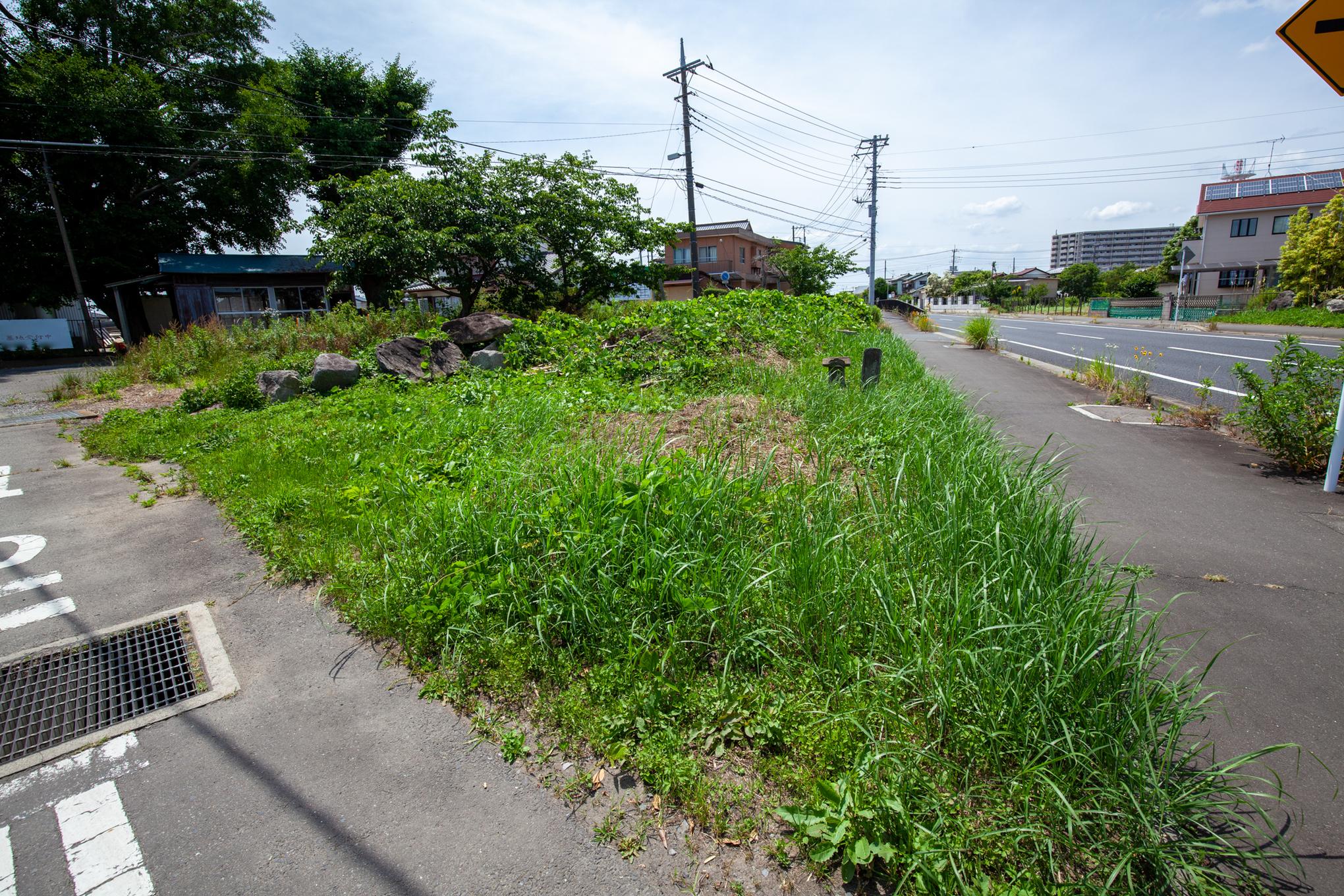 f:id:akichiniiko:20210611194839j:plain