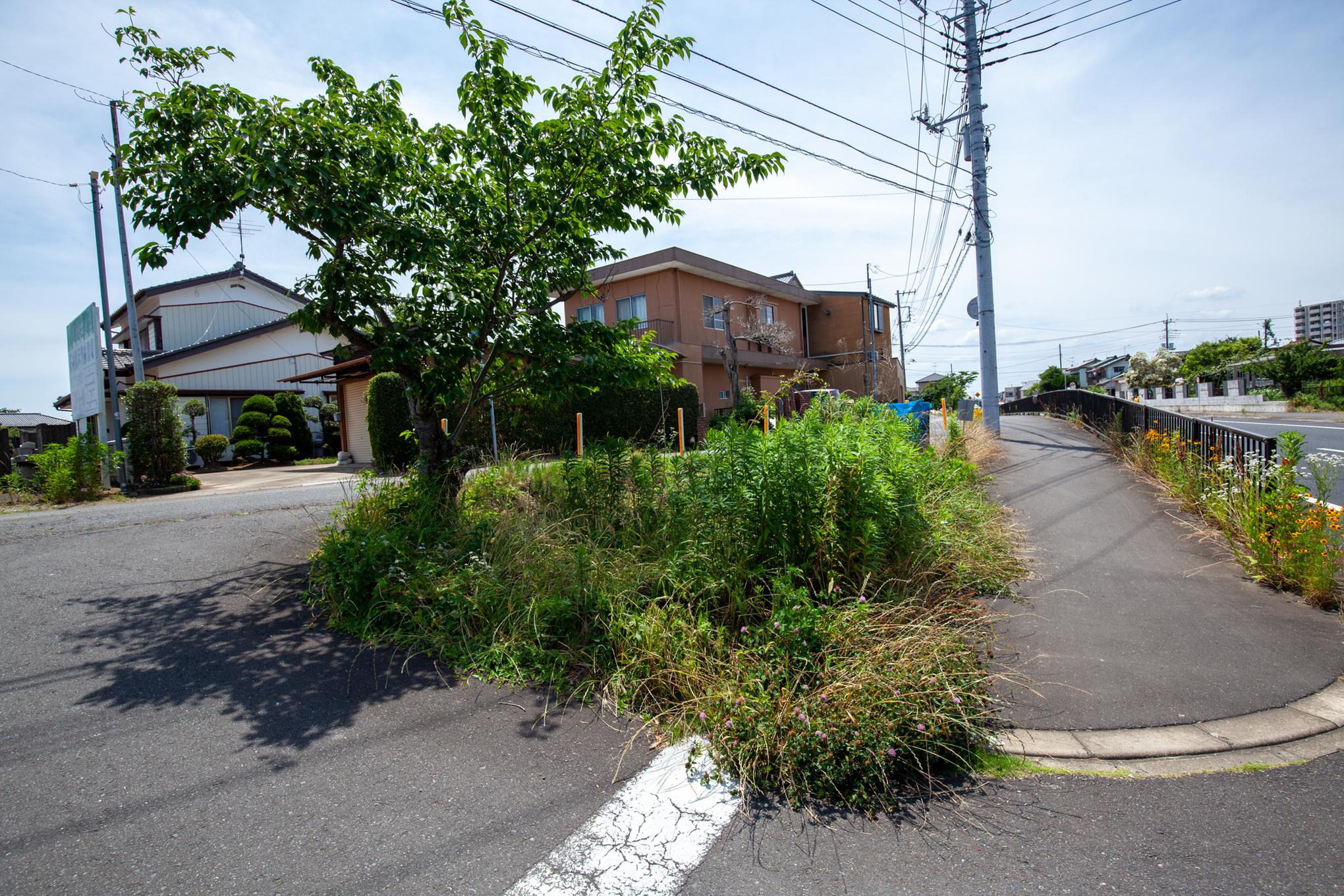 f:id:akichiniiko:20210611213600j:plain