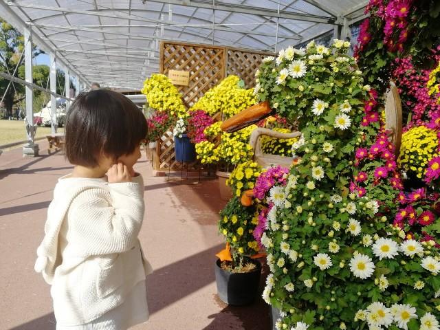 f:id:akihamama:20200313190339j:image