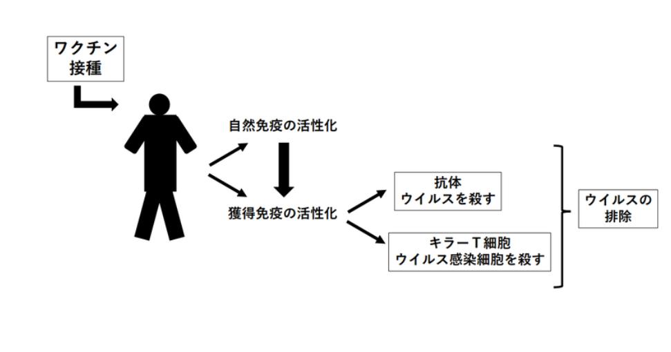 f:id:akihiko-shibata:20200526223259p:plain