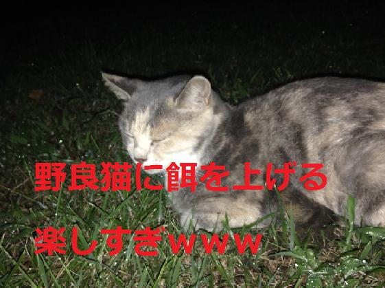 f:id:akihiro5:20190704165958p:plain