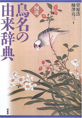 f:id:akihitosuzuki:20190221075326j:plain