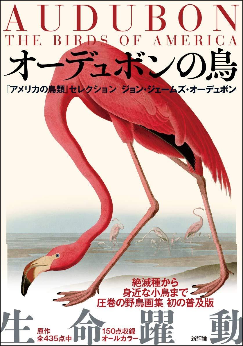 f:id:akihitosuzuki:20200429091016j:plain