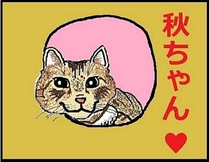 f:id:akihuooblog:20171031145056j:plain