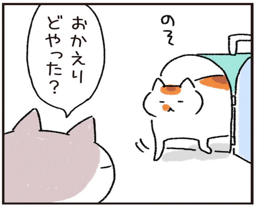 f:id:akihuooblog:20180328142726p:plain