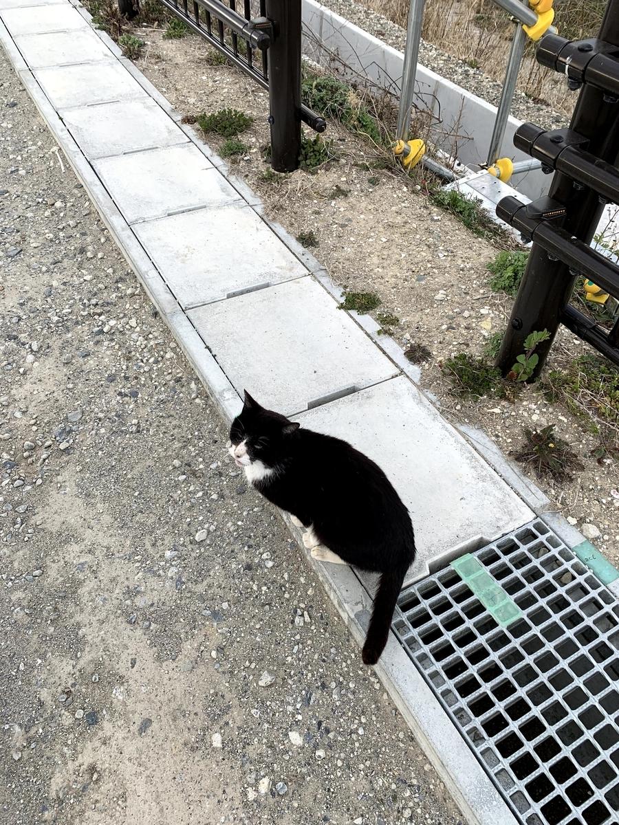 f:id:akijironotabi:20200613032849j:plain