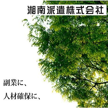 f:id:akikisa:20170811170027j:plain