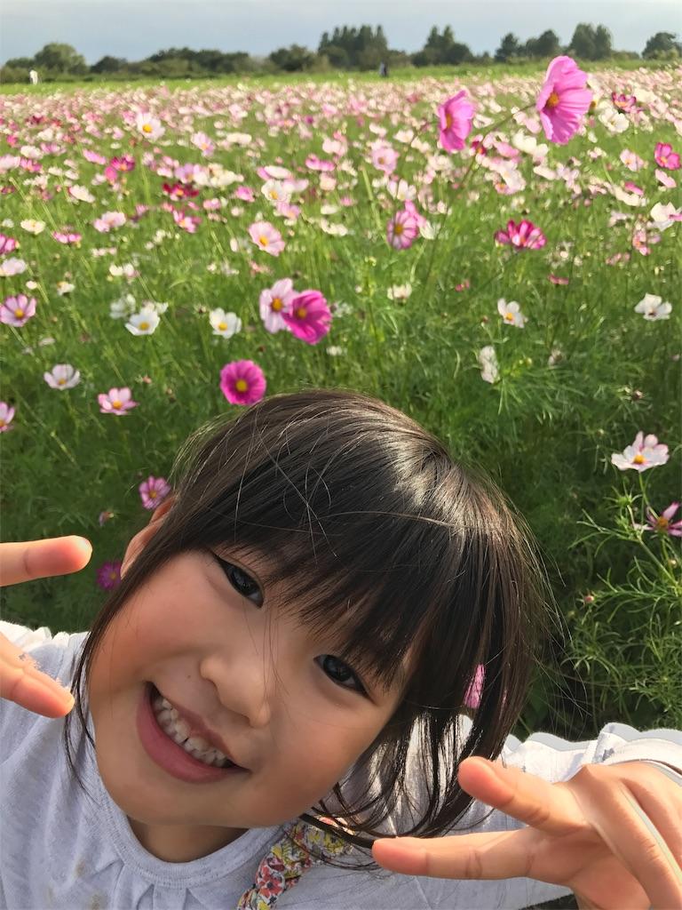 f:id:akimakiakimakiakimakimaki:20171013235055j:image
