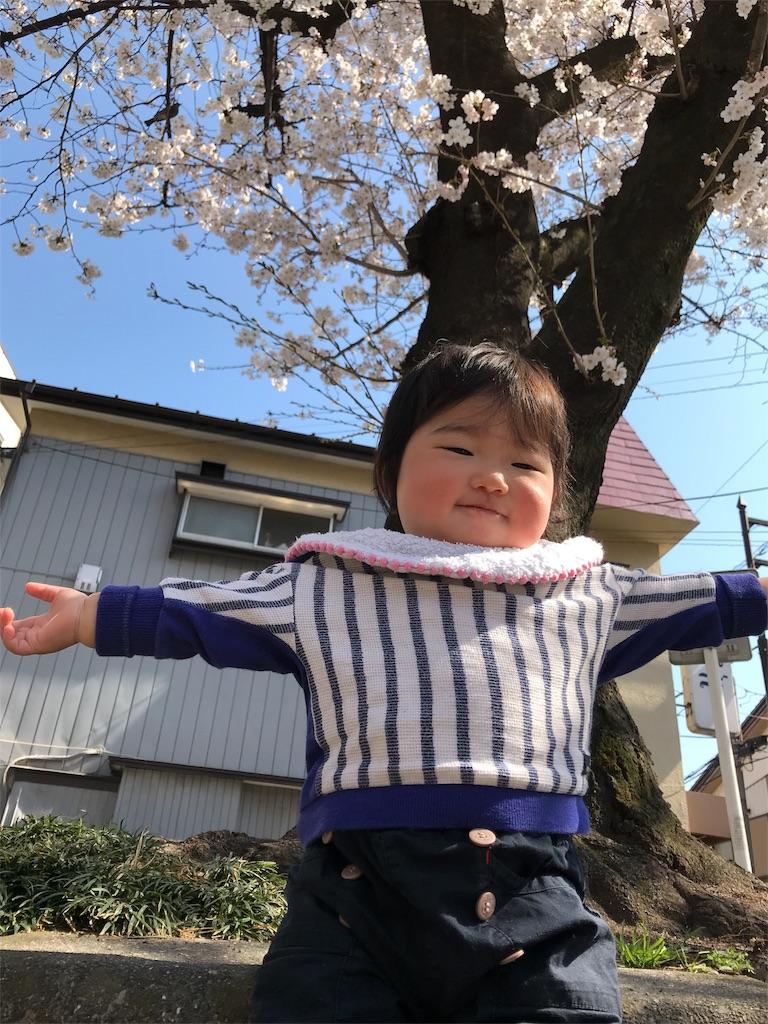 f:id:akimakiakimakiakimakimaki:20180326234028j:image