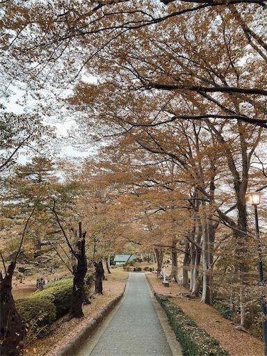f:id:akimao:20201025141937j:image