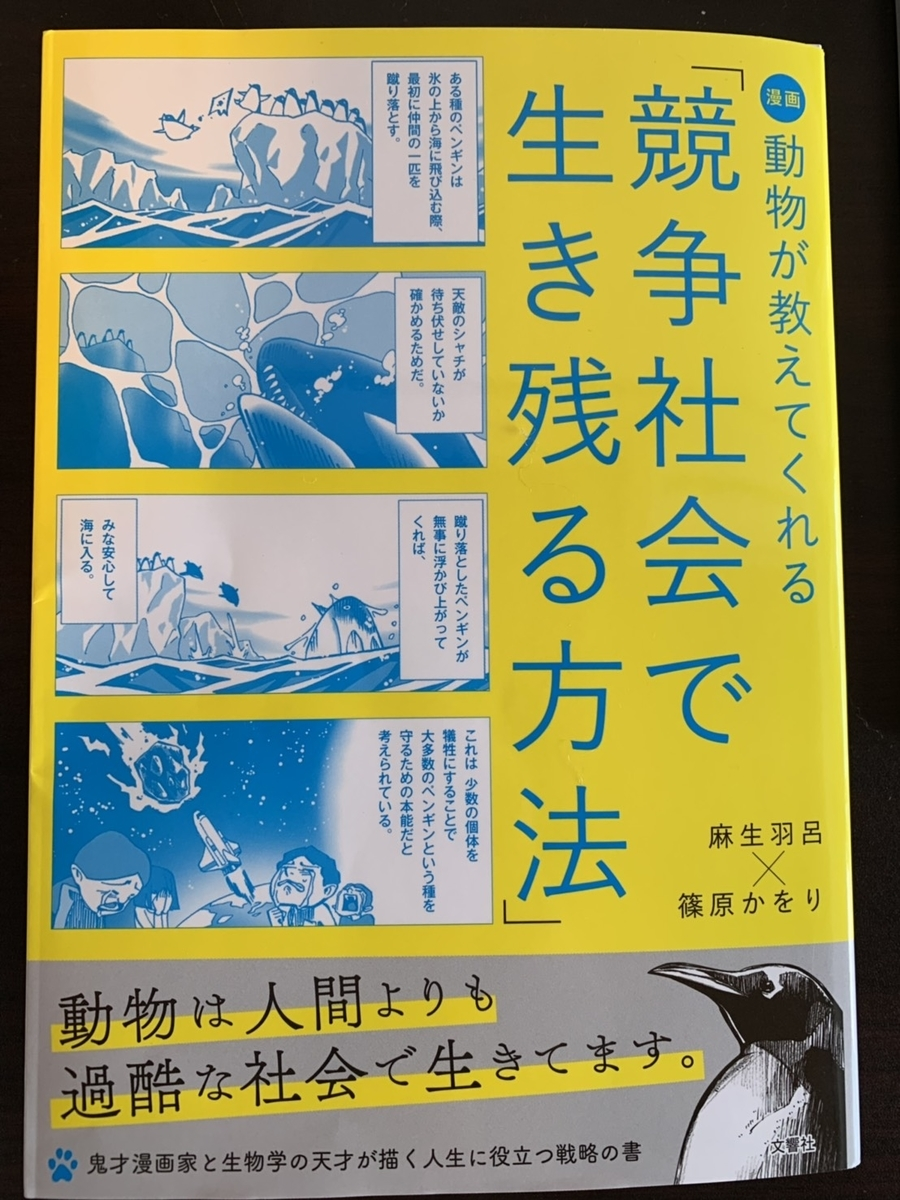 f:id:akinaritodoroki:20190816102453j:plain