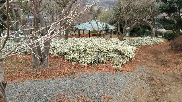 f:id:akinobu0227572905:20170319165301j:image