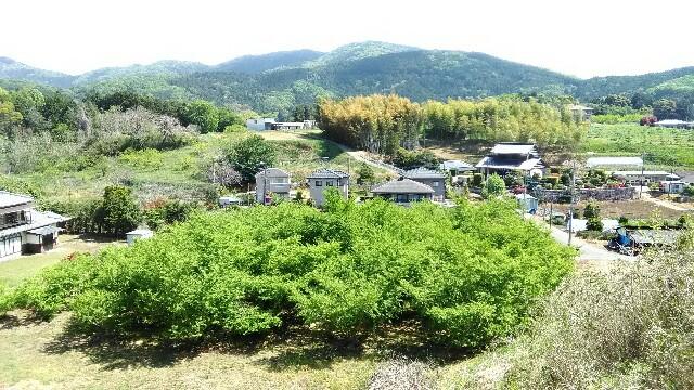 f:id:akinobu0227572905:20170505134534j:image
