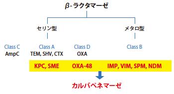 f:id:akinohanayuki:20190629070347j:plain