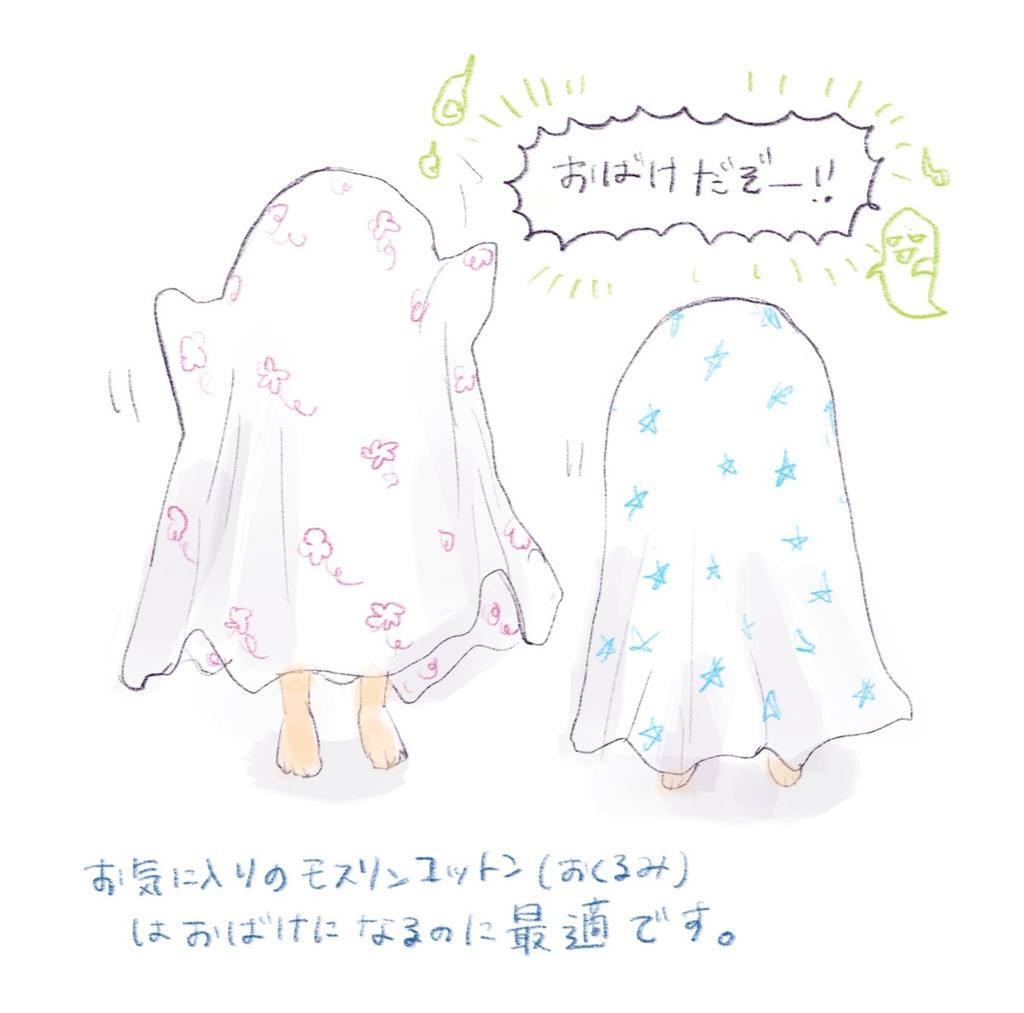 f:id:akinokaki:20160617210901j:plain